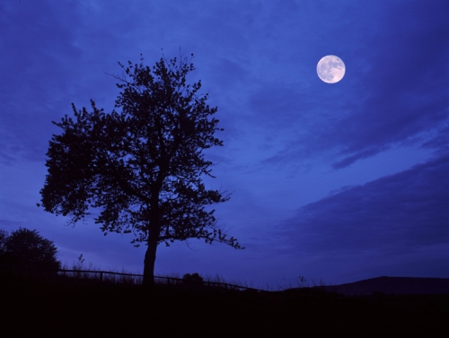 full_moon_blue